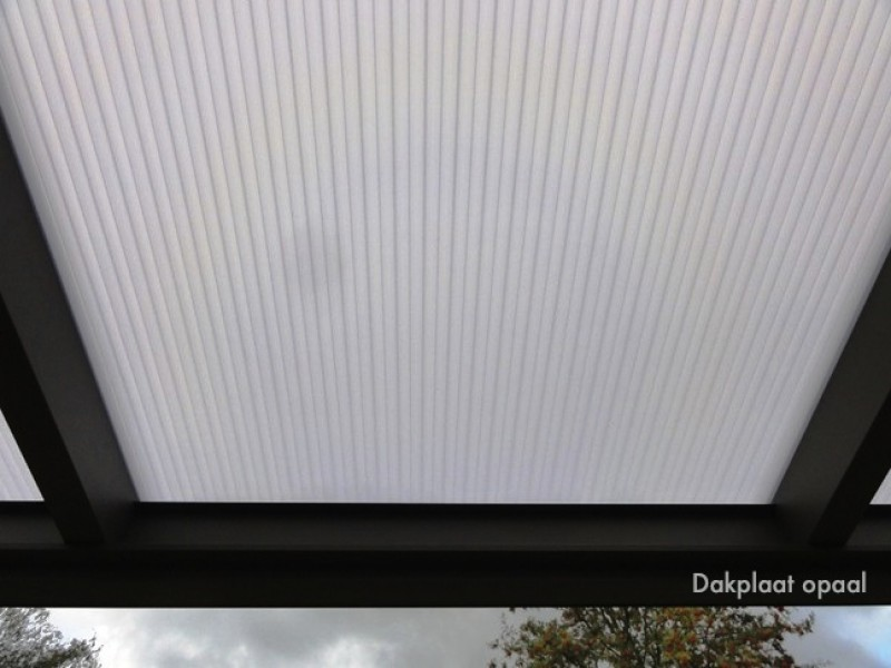 Dachblatt Opal